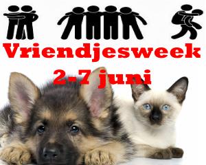 vriendjesweek_2014_06_02-07_600x480