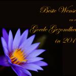 Gelukkig Nieuwjaar en Beste Wensen voor 2017